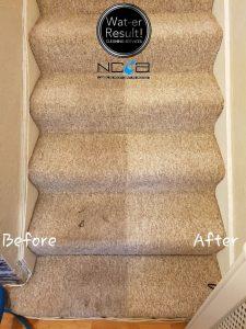 End of tenancy carpet cleaned